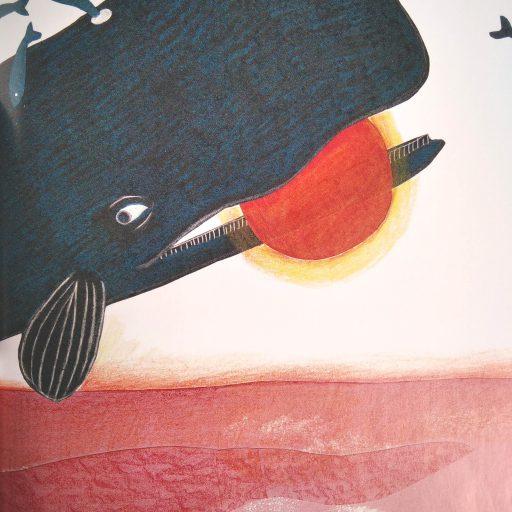 Balena_LACONCHIGLIA_coccolebooks, bookcrossing, ancora di parole, illustrazione, libri per bambini, infanzia