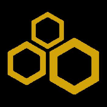 Logo BeeDini - Vizzini2030