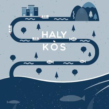 Logo HALYKÒS – Prevenzione Ambientale e Valorizzazione della Foce del Fiume Platani