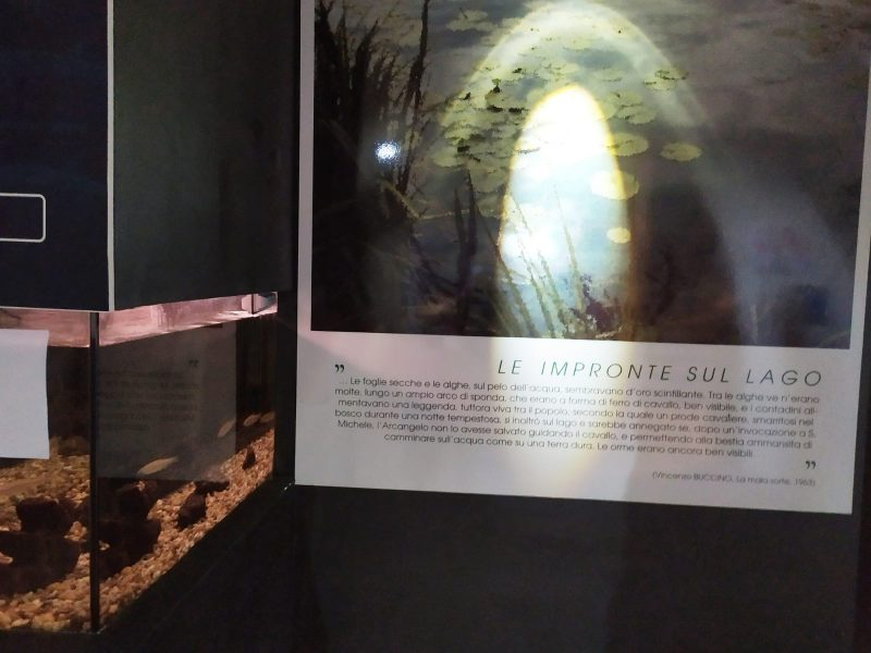 museo del Vulture Lake B.E.S.T