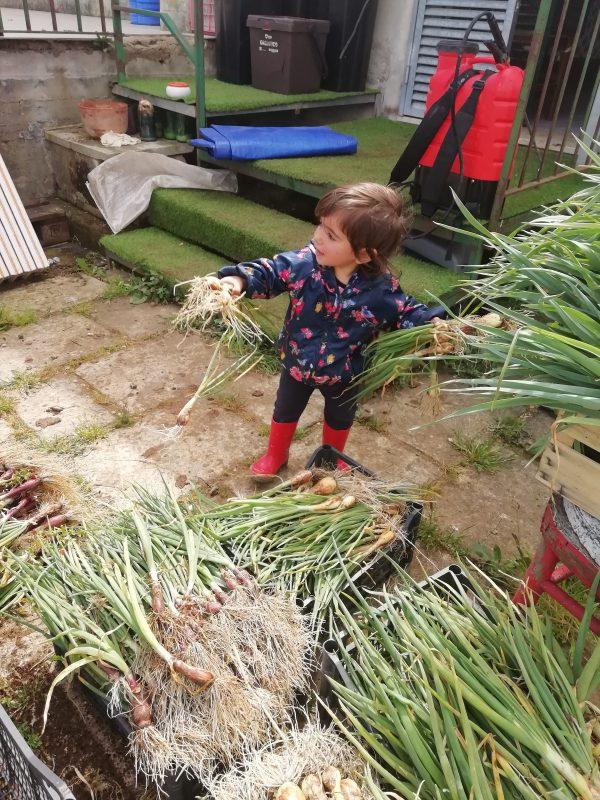 Adotta l'orto e nuove generazioni