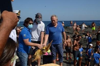 La tartaruga di caretta caretta e alcuni rappresentanti di PANT-AID