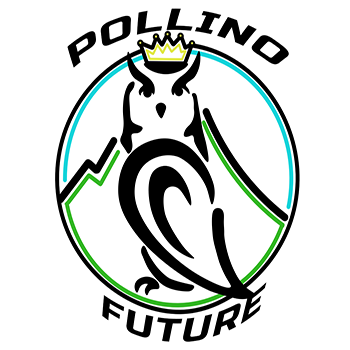 Logo Pollino Future